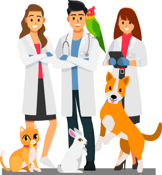 Drawing of 3 veterinarians and a pet bird, dog, cat and rabbit