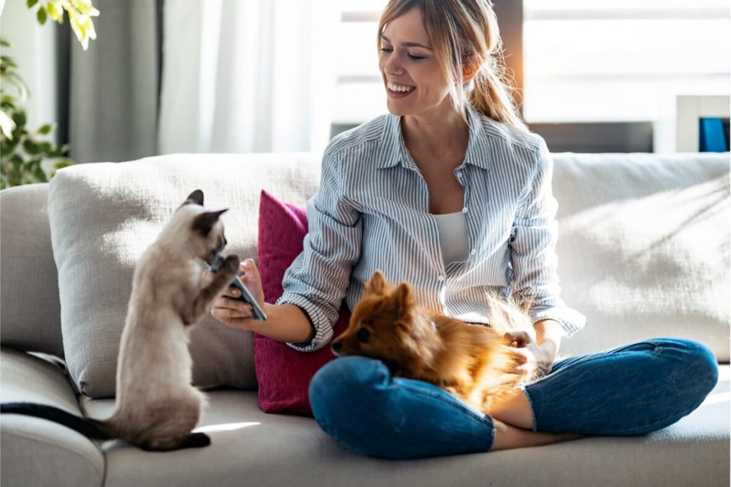 Women holding a dog and playing with a cat with her cell phone